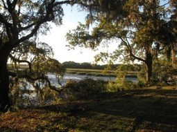 Gullah Geechee National Heritage Corridor: Keeping the Promise ... | Gullah-Geechee Cultural Heritage | Scoop.it