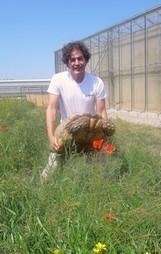 Savannah leader de la vente des reptiles en France - ToulÉco Tarn | L'actualité tarnaise 2014 | Scoop.it