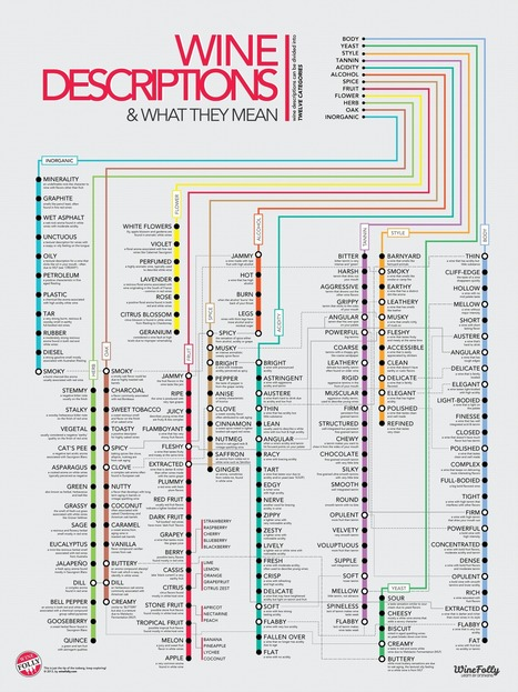 Subway style Wine Descriptions Chart (Infographic) | Wine Folly | Me, myself & wine | Scoop.it