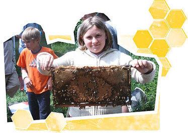 Bienen in der Schule « Schrot&Korn Nachrichten   Bienen   Scoop.it