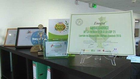 A Marseille, une start'up récompensée pour son innovation écologique - France 3 Provence-Alpes   Ecologie   Scoop.it