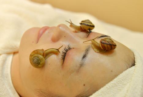 VIDEO. La bave d'escargot, nouvel elixir de beauté ! - Insolite ...   Educatel - Découvrez les formations à distance dans le domaine de la beauté   Scoop.it