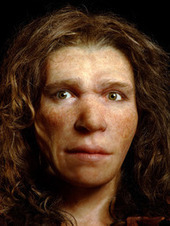 Were Some Neandertals Brown-Eyed Girls? - ScienceNOW | Anthropology, Archaeology, and History | Scoop.it