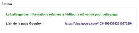 Relier son site et sa page Google+ avec une balise rel=publisher | Referencement naturel seo sud | Scoop.it