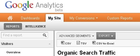 How To Extract Keywords from Google Analytics - Pedro Matias | ScoopSEO | Scoop.it