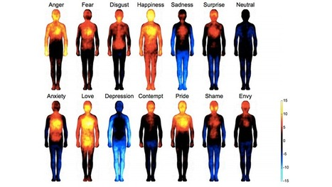 Where Emotions Hit You, Visualized | Heal the world | Scoop.it