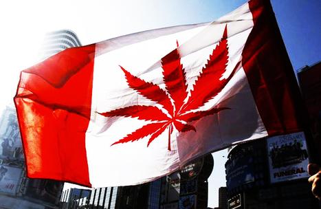 How To Access Canada's New Medical Marijuana Program - Part 1 ... | cannabis | Scoop.it