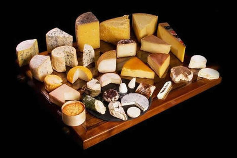 The 10 Most Expensive Types Of Gourmet Cheese In The World | General News And Stories | Scoop.it