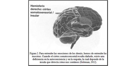 NEURONAS ESPEJO EN EL AULA - Magazine INED21 | Aprendizaje y Cambio | Scoop.it