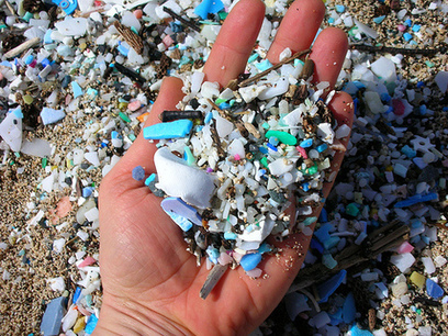 Microbeads are a sign of our plastic consumer madness   INTRODUCTION TO THE SOCIAL SCIENCES DIGITAL TEXTBOOK(PSYCHOLOGY-ECONOMICS-SOCIOLOGY):MIKE BUSARELLO   Scoop.it