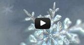 Frozen Planet: End of Earth   In Deep Water   Scoop.it