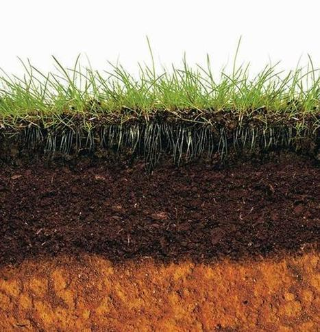 Do you know dirt about soil? Here's a three-step primer | Essentially Good Information | Scoop.it