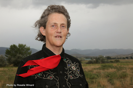 McDonald's Lead Contributor to Dr. Temple Grandin Scholarship in Animal Behavior and Welfare at Colorado State University - News & Information - Colorado State University | Animal Cruelty | Scoop.it
