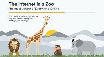 Guida alla lunghezza dei contenuti online   Content marketing   Scoop.it