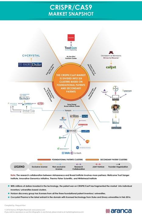 Aranca - CRISPR/Cas9 – Market Players Snapshot   Business Research   Scoop.it