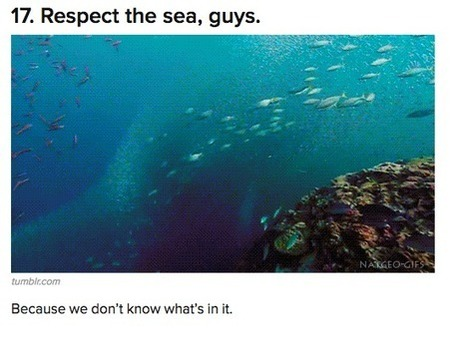 16 Things BuzzFeed Doesn't Know About The Ocean - Science Sushi | The deep | Scoop.it