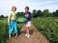 8/3: Geld verdienen met Permacultuur?   Eetbaar Park   Permacultuur in Nederland   Scoop.it