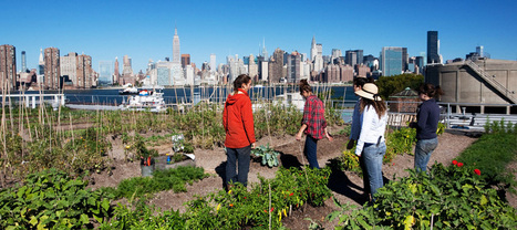 An Urban World Calls for Urban Agriculture | Food related production. | Scoop.it