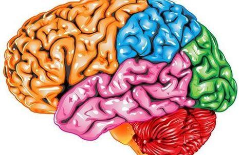 El dolor crónico está en el cerebro | Apasionadas por la salud y lo natural | Scoop.it