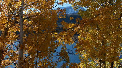 Spectacular Fall Foliage on View in the Eastern Sierra | The Miracle of Fall | Scoop.it