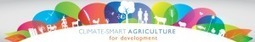 CIVIL SOCIETY DIALOGUE ON CLIMATE-SMART AGRICULTURE ... | Democracy in Place and Space | Scoop.it