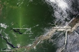 Shadowing in Sensor Images: NASA study points to 'infrared-herring' in apparent Amazon green-up | #TreeNews | Scoop.it