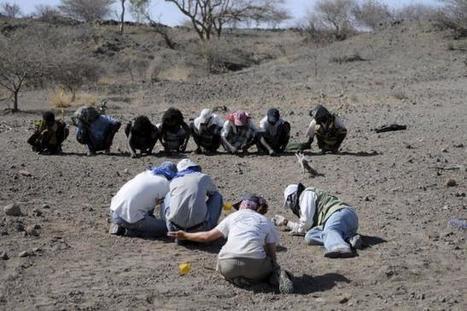 Ethiopian fossils represent new member of human family tree   Human Evolution   Scoop.it