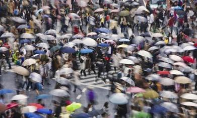 Cities and their psychology: how neuroscience affects urban planning | Pedestrianism | Scoop.it