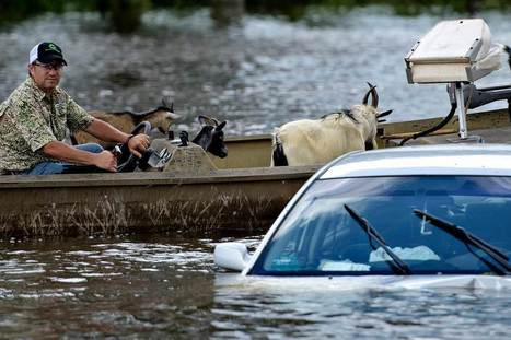 More bad storms are coming. A lot more | Sustain Our Earth | Scoop.it