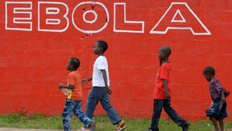 The cost for Preventive Care: Ebola-hit countries seek billions for recovery | Medical GIS Guide | Scoop.it
