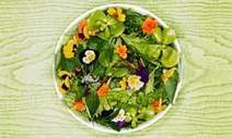 """HowStuffWorks """"What is edible landscaping?"""" 