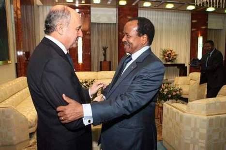 Otages au Cameroun : un succès diplomatique et des questions | Need To Know | Scoop.it