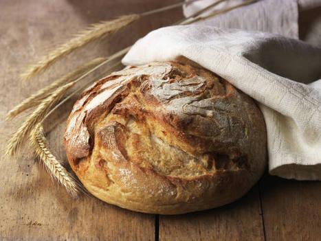 El CSIC desarrolla un pan de trigo modificado genéticamente apto para celíacos - RTVE.es   Horno de Pan   Scoop.it