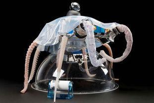 Biomimétisme : regardez cet impressionnant robot poulpe se déplacer sous l'eau | Biomimétisme, Biomimicry, Bioinspired innovation | Scoop.it