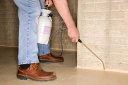 Top pest control contractor in Baton Rouge, LA - Corporate Green, LLC | Corporate Green, LLC | Scoop.it