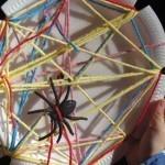 Very busy making spider webs in preschool | Teach Preschool | Scoop.it