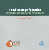 FAO -News Article:Food wastage: Key facts and figures | Organic farming | Scoop.it