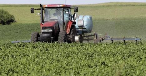GMO Labeling Laws Take Center Stage   GMOs & FOOD, WATER & SOIL MATTERS   Scoop.it