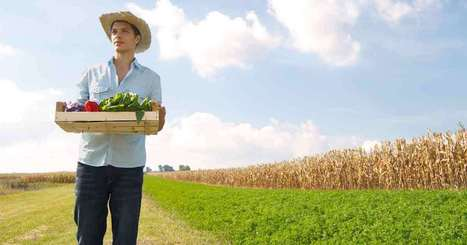 How Biological Farming Can Make Better Food Supply | Oven Fresh | Scoop.it