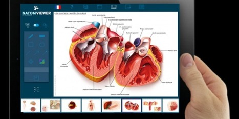 Une appli pour faciliter la relation entre patients et médecins | La revue de presse de Callimedia | Scoop.it