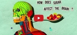 For Students of Science, Understanding Our Sugar Addiction | STEM Connections | Scoop.it