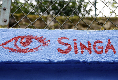 [La France s'engage] Portrait de l'association lauréate Singa par  Say Yess | Associations - ESS | Scoop.it