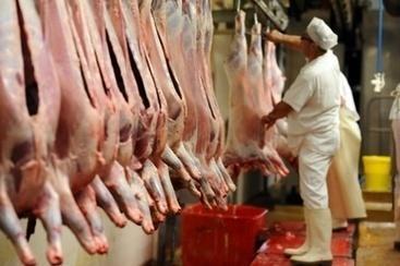 Abattoirs: faute d'effectif, les inspections se concentrent sur la surveillance sanitaire   Le SNISPV dans les medias   Scoop.it