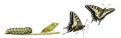 Blog de Psicología: El lado positivo de los cambios | PLE | Scoop.it