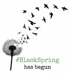Black Spring | Community Village Daily | Scoop.it