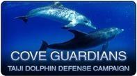Sea Shepherd UK :: Future Events. | #Orca #Avenger @VidarOceans | Scoop.it