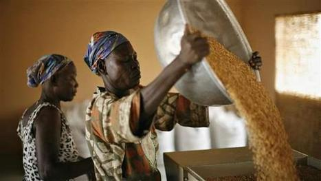 Catalyzing Development Revisited - Brookings Institution (blog) | Development Economics | Scoop.it