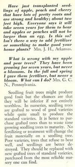 Things Your Grandmother Knew: Truths About Fruit Tree Seedlings | Vintage Living Today For A Future Tomorrow | Scoop.it