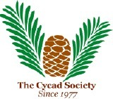 (EN) - Illustrated Glossary of Cycad Terms   Jody L. Haynes   Glossarissimo!   Scoop.it