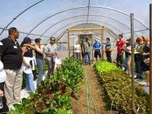 ECO City Farms – Urban Agriculture Certificate Program | Urban Education & More | Scoop.it